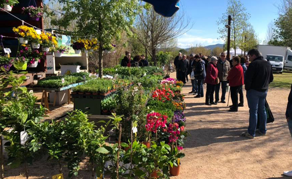 Ambient festiu a la XI edició de la Fira de la Flor i el Planter