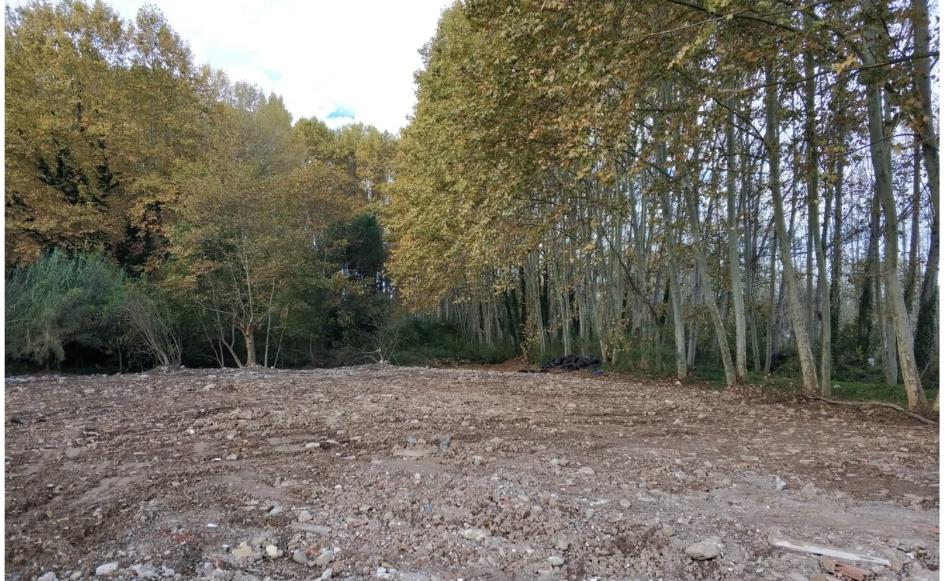 Augmenten els espais verds al Parc de les Deveses amb l'enderroc de dues construccions abandonades